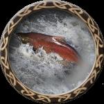 fishing_salmon