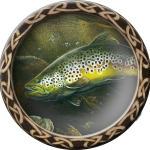 fishing_trout